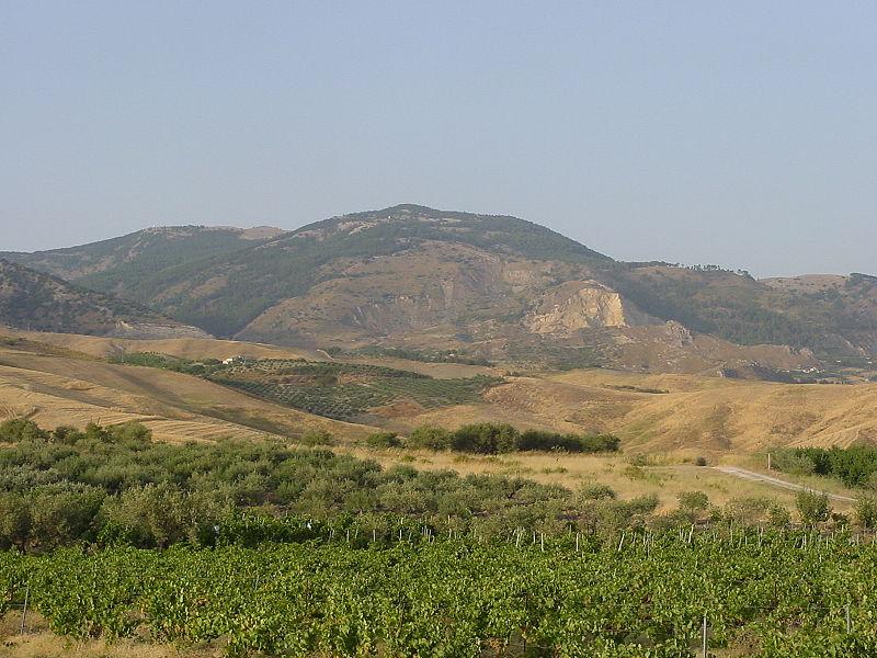 Monte_delle_rose1
